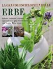 La grande enciclopedia delle erbe