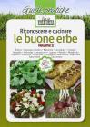 Riconoscere e cucinare le buone erbe. Alliaria. Asparago selvatico. Balsamita. Caccialepre. Crispigni. Favagello. Galinsoga. Lampascioni. Luppolo. Mastrici... vol.2