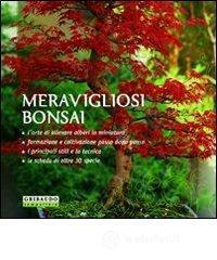 prezzo Meravigliosi bonsai in offerta