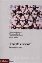 Il capitale sociale. Istruzione per l'uso