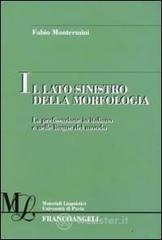 Il lato sinistro della morfologia. La prefissazione in italiano e nelle lingue del mondo. E-book