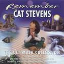 Remember-ultimate collection