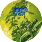 Fly from here return trip (picture disc) (Vinile)