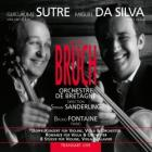Concerto per violino e viola op.88