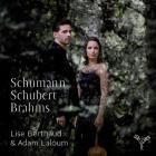Sonata per viola n.2 op.120