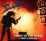 Ghost in the ruins(2011 edition)