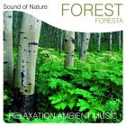 Sound of nature - forest