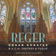 Sonate per organo (nn.1 e 2), fantasia e