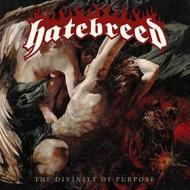 The divinity of purpose(ltd.180g black vinyl) (Vinile)