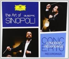 The art of sinopoli concer