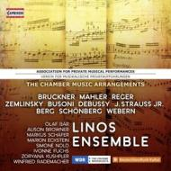 Chamber music arrangements - association for private music performances
