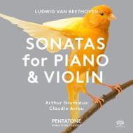 Sonata per violino n.1 op.12, n.5 op.24 ''peimavera''