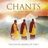 Chants: spirit of tibet