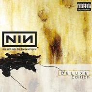 The downward spiral(deluxe edition)