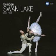 Swan lake - il lago dei cigni