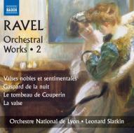 Opere orchestrali (integrale), vol.2