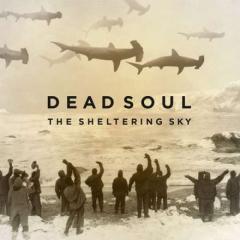 The sheltering sky (lp+cd) (Vinile)