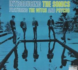 Introducing the sonics: expanded edition (Vinile)