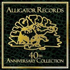 Alligator records-40° anniv.collect