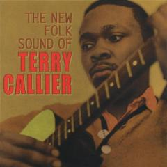 The new folk sound