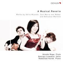 Trio per flauto, violoncello e pianofort
