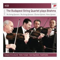 The budapest strinq quartet play brahms
