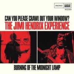 Can you please crawl out your window?/bu (Vinile)