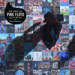 A foot in the door - the best of pink floyd (Vinile)