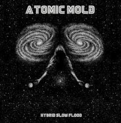 Hybrid slow flood (white vinyl) (Vinile)
