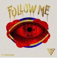 Follow me inc roger sanchez harry romero waajeed remixes (Vinile)