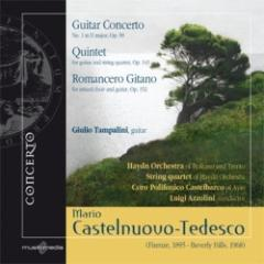 Guitar concerto no. 1 in d major op. 99-