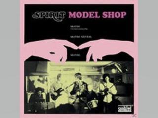 Model shop (Vinile)
