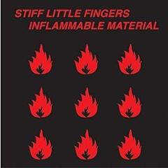 Inflammable material (Vinile)