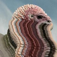 Bird brains (Vinile)
