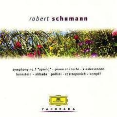 Schumann-panorama