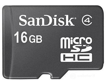 Schede di memoria SDSDQM-016G-B35 (AZ)