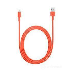 Cable Lightning - iPhone 5