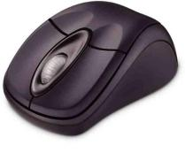 MS Wireless Nbk Opt Mouse 3000 Grey