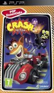 Essentials Crash tag team racing