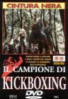 Il Campione Di Kickboxing