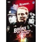 Bronx, 41° distretto di polizia