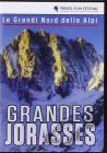 Grandes Jorasses. Le Grandi Nord delle Alpi