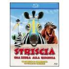 Striscia, una zebra alla riscossa (Blu-ray)