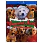Supercuccioli a Natale blu-ray e dvd