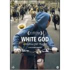 White God. Sinfonia per Hagen