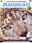 Sguardo Sul Mondo Degli Animali - Leopardo Delle Nevi