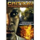 Critical Assignment