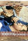 7 Winchester per un massacro