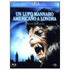Un lupo mannaro americano a Londra (Blu-ray)