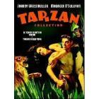 Il tesoro segreto di Tarzan - Tarzan a New York